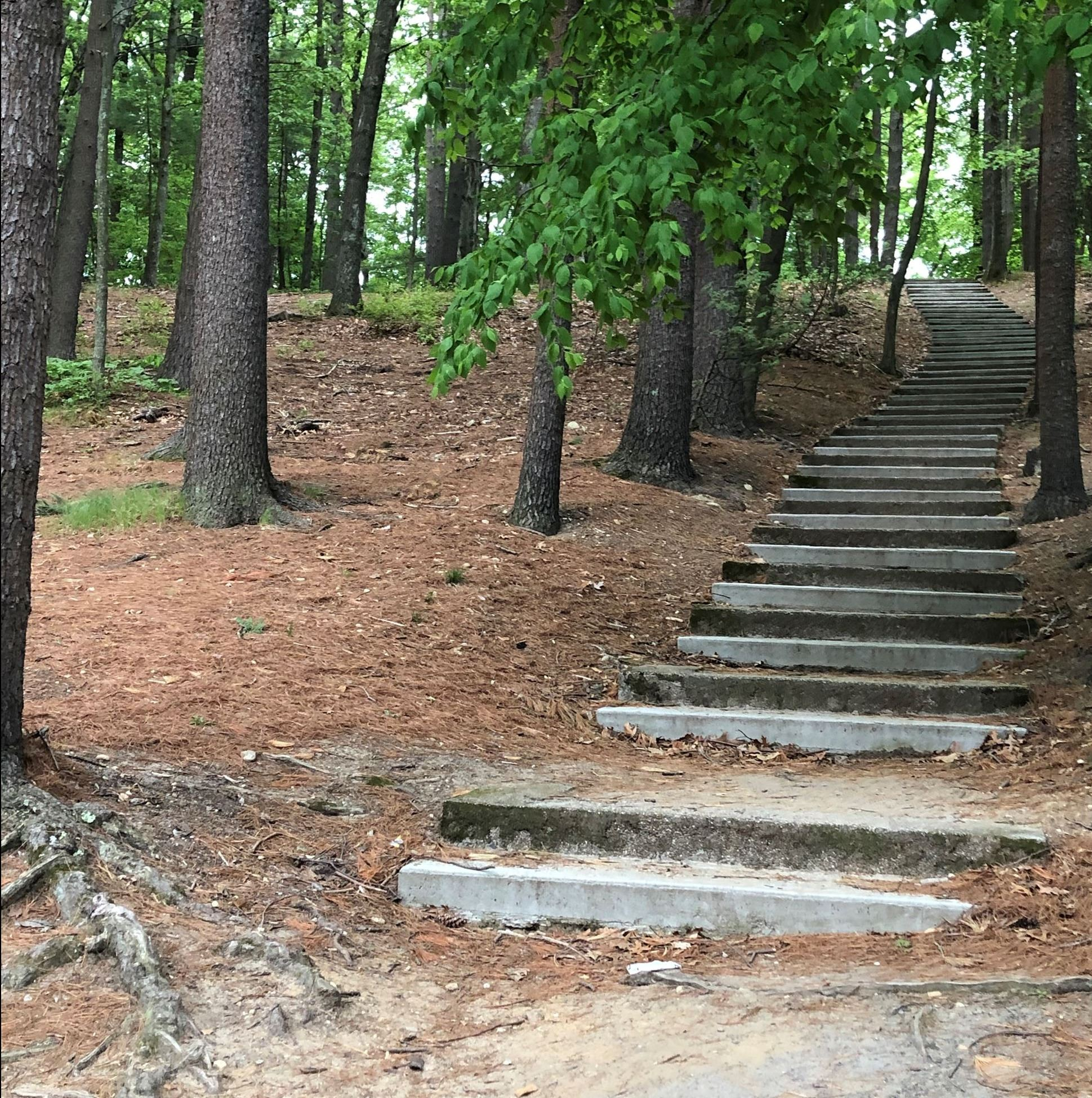 White Pond stairs